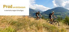 Geführte Biketouren in Südtirol